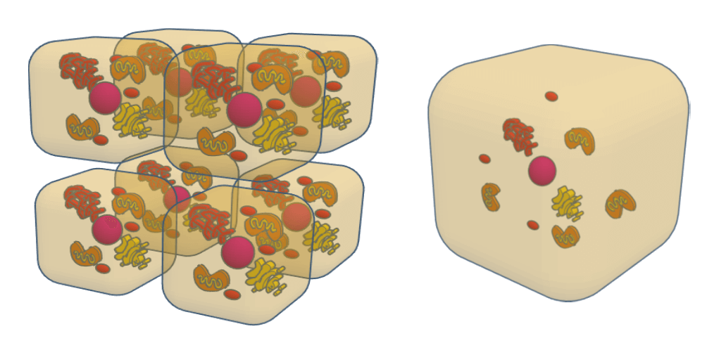 Why the smaller the cell, the larger the area