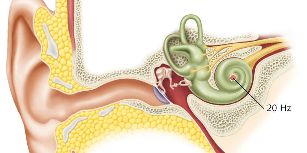 Cochlear and audio frequency
