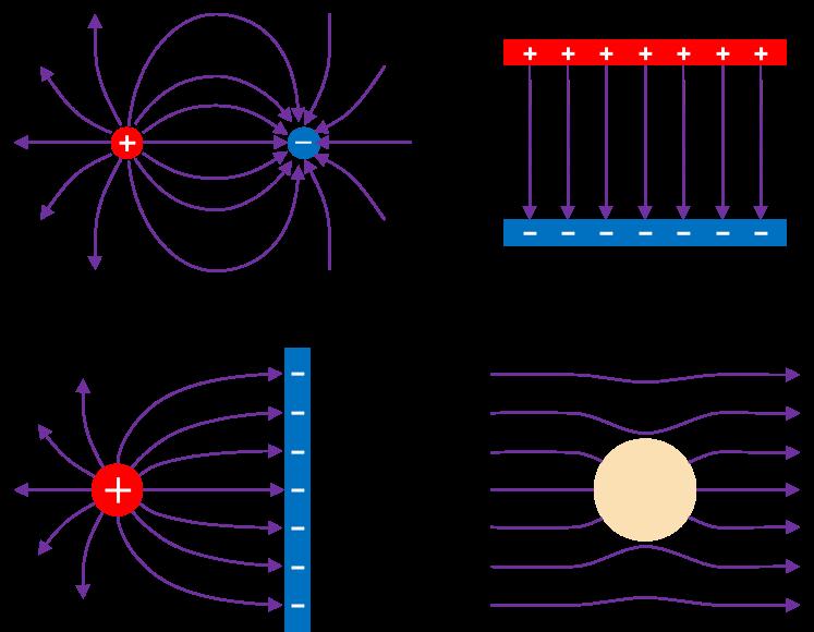 Electric field line