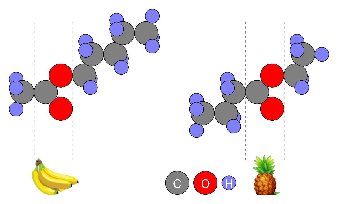 The Structure of Ester